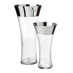 Silver Glass Vases